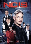 ncis-season-12-dvd-whoelsale-china